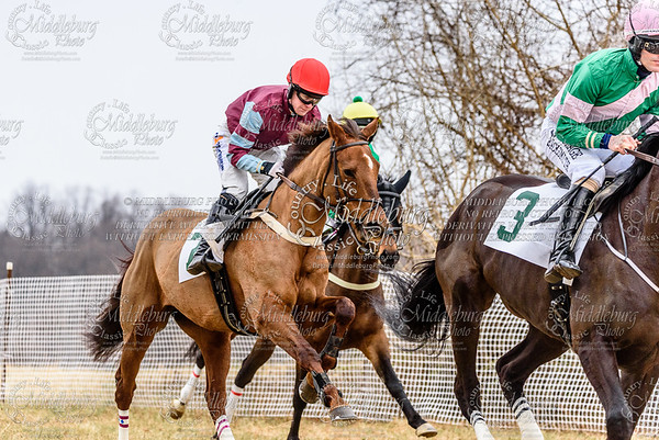 Warrenton Hunt Point to Point km-14