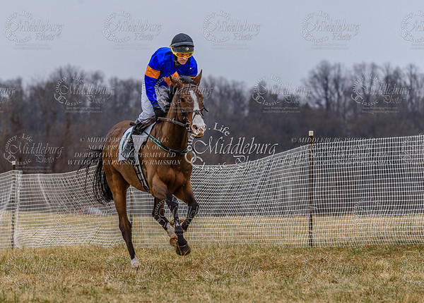 Warrenton Hunt Point to Point km-6