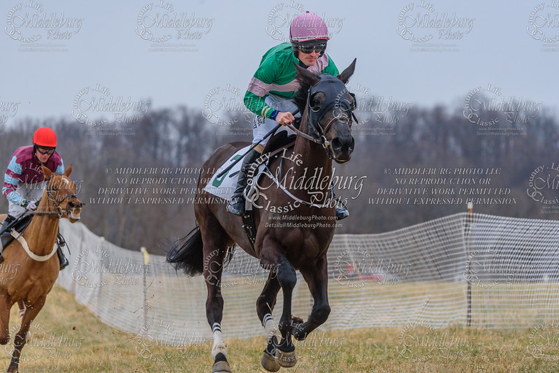 Warrenton Hunt Point to Point km-34