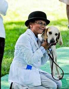 Virginia Foxhound Show-4