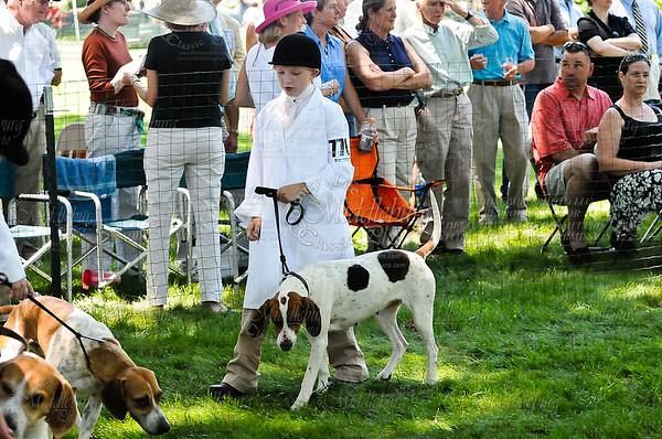 Virginia Foxhound Show-6