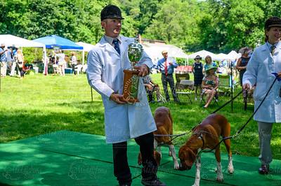 VA Foxhound Show-15