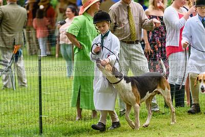 hound show-492