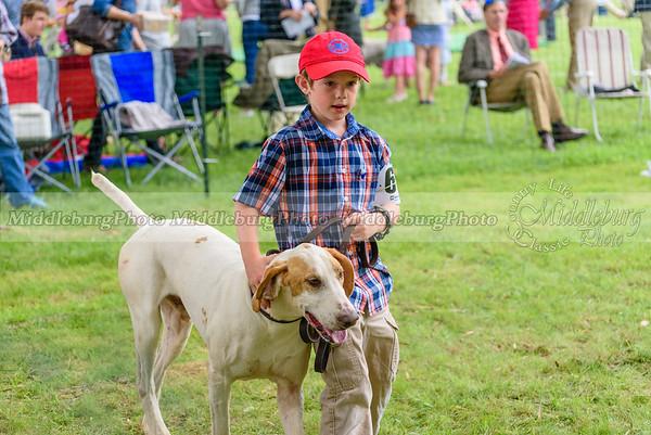 hound show-478