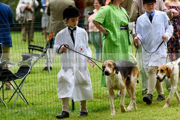 hound show-680