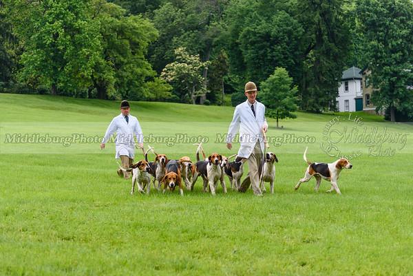 hound show-714