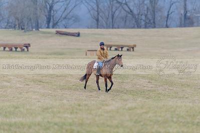 LFH Rolling Meadow-8