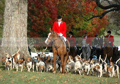 John, Huntsman; Open Meet Groveton #2