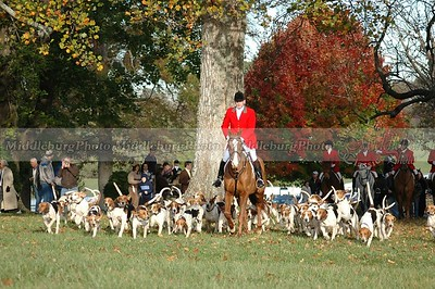 John, Hunstman with Hounds Groveton #3