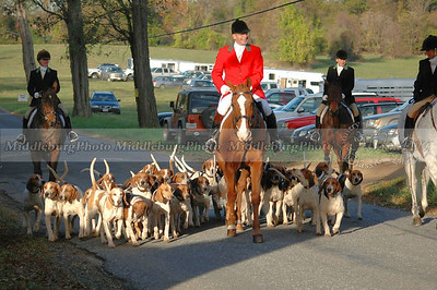 Horse and Hounds Groveton #11