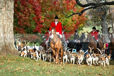 John, Huntsman with Hounds, Open Meet Groveton #1