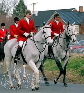 Fox Hunting in Virginia, 2005 (MB)
