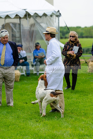 MH Puppy Show-22