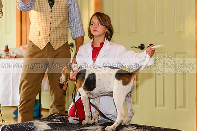 MH Puppy Show-51
