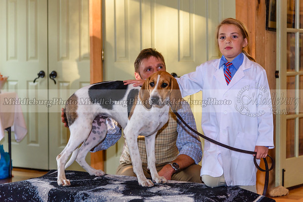 MH Puppy Show-36