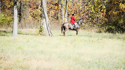 Middleburg Hunt 2013
