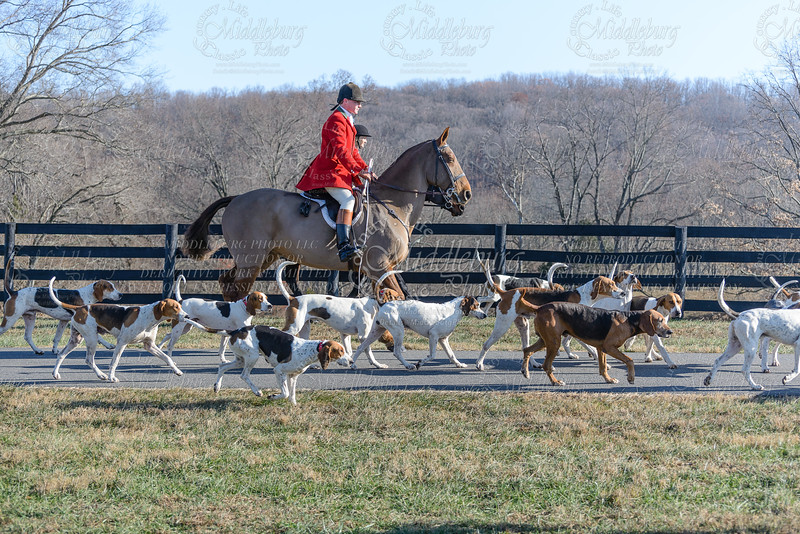 Middleburg Hunt - Windfields 2013