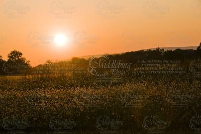 Sun rise over the Bull Run Mountains