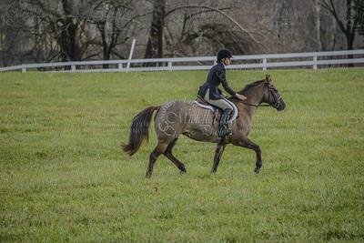 OCH at Halfway Farm,