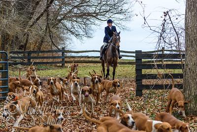 Orange County Hounds at Rutledge