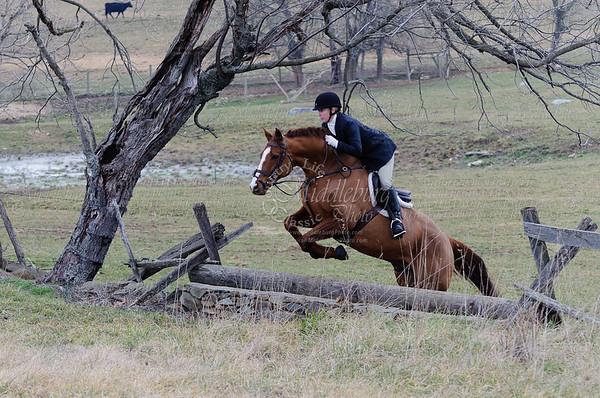 Piedmont Fox Hounds-2012- February