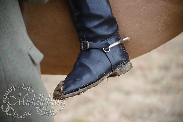 PH buttonwood-8753
