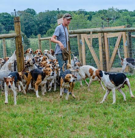 pfh hounds-61