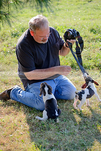PFH Puppies-53