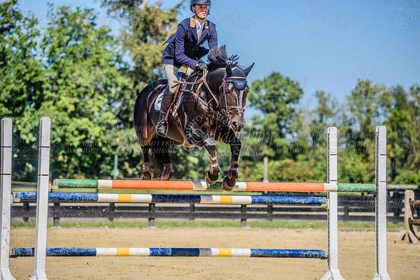Piedmont Jumper Show-10