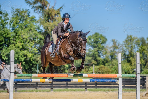 Piedmont Jumper Show-16