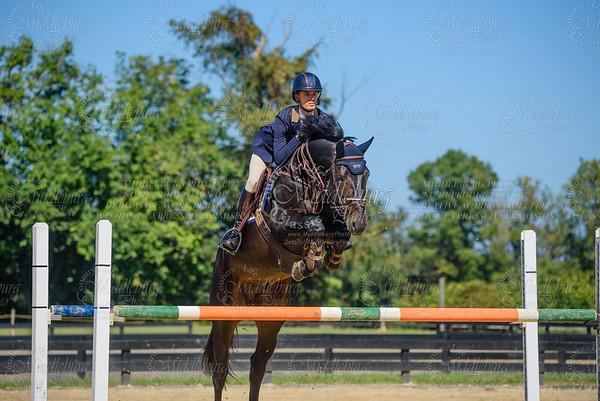 Piedmont Jumper Show-26