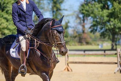 Piedmont Jumper Show-31