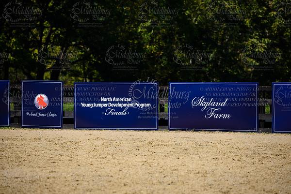 Piedmont Jumper Show-5