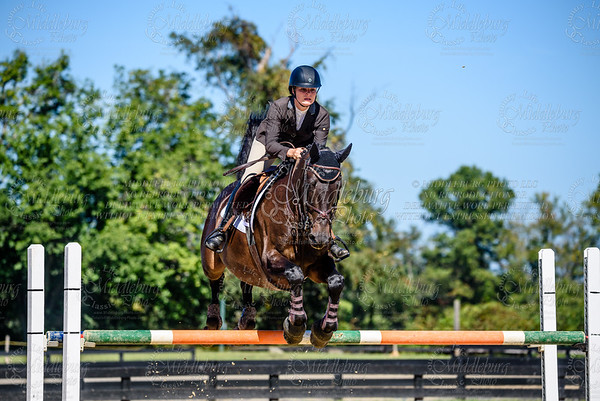 Piedmont Jumper Show-45