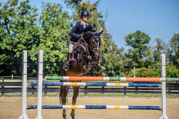 Piedmont Jumper Show-8