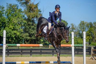 Piedmont Jumper Show-29