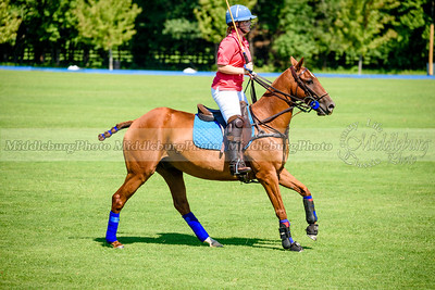 Polo Banbury-26