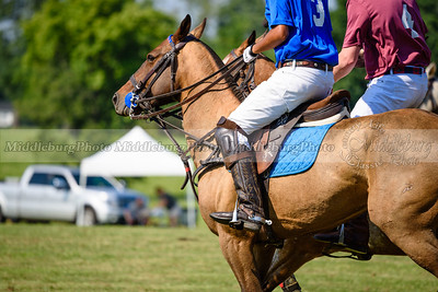 Polo Banbury 7-16-38