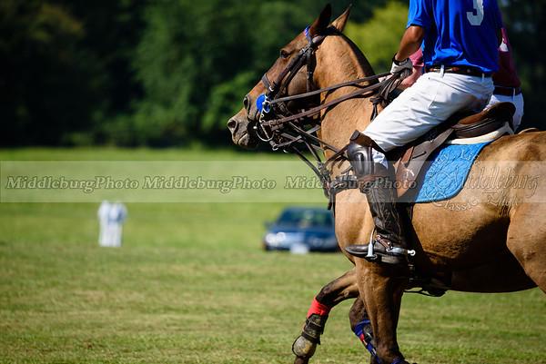 Polo Banbury 7-16-40