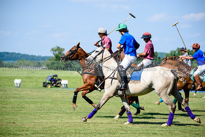 Polo Banbury 7-16-36