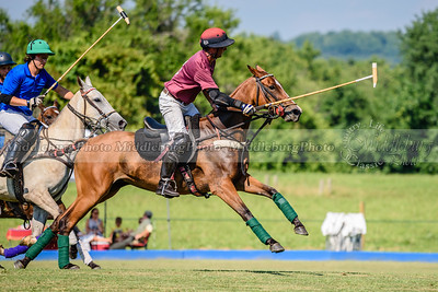 Polo Banbury 7-16-17