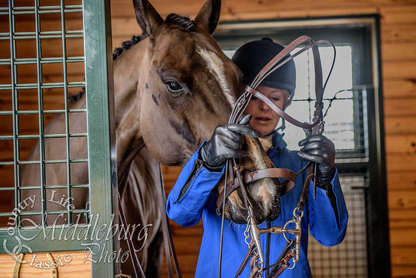 Asmar Side Saddle-27
