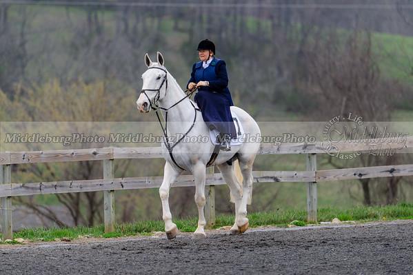 Cheshire P2P 2016-119