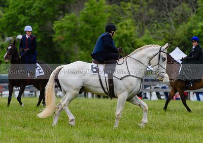 potomac races-655
