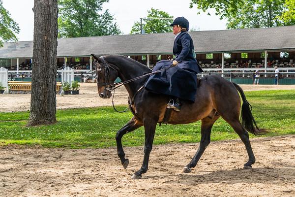 Horse Show-652