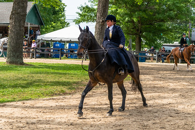 Horse Show-647