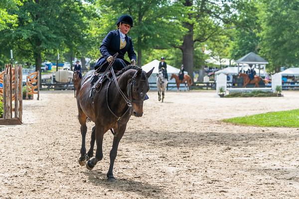 Horse Show-609