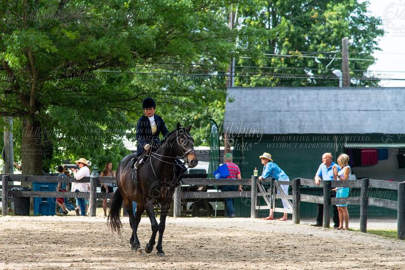 Horse Show-618