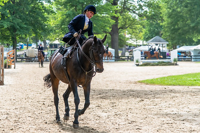 Horse Show-610