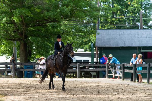 Horse Show-617